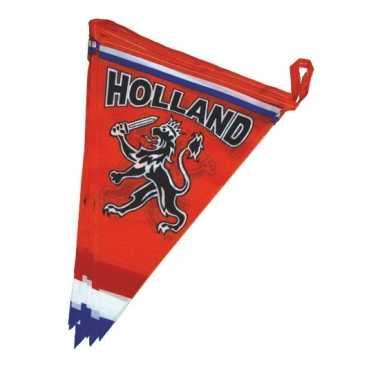 Oranje versiering vlaggenlijn
