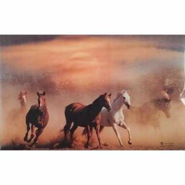 Paarden placemats 3d type 1