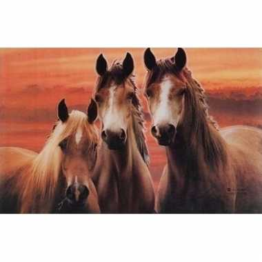 Paarden placemats 3d type 2