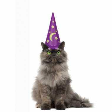 Paarse tovenaarshoed voor katten