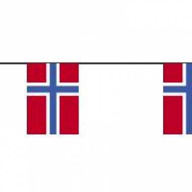 Papieren vlaggenlijn noorwegen
