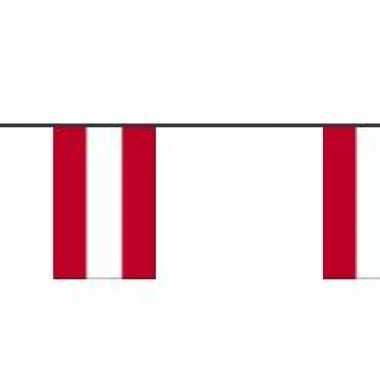 Papieren vlaggenlijn oostenrijk