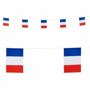 Papieren vlaggenlijn slingers frankrijk 6 m