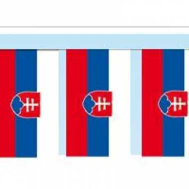 Papieren vlaggenlijn slowakije