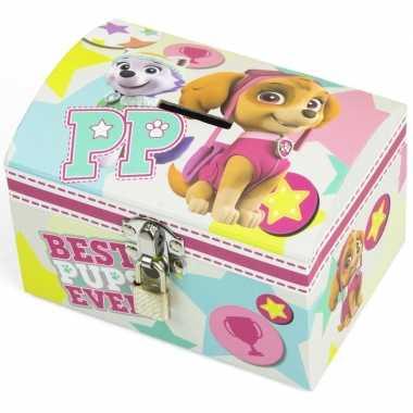 Paw patrol skye en everest mint/roze speelgoed spaarpot met slotje vo