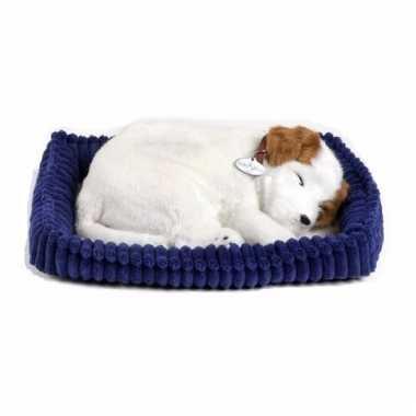 Perfect petzz jack russel knuffel hond
