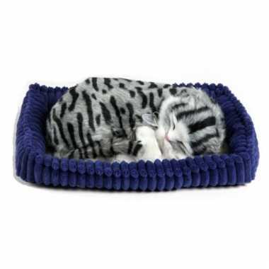 Perfect petzz kat knuffel grijs