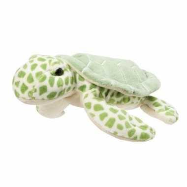 Pluche knuffeldier schildpad 22 cm
