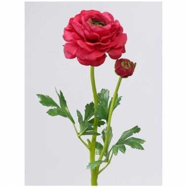 Ranonkel rood/roze 51 cm met 2 knoppen