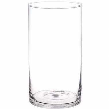 Rechte bloemenvaas glas 30 cm