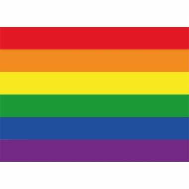 Regenboog gay vlag sticker 7.5 x 10 cm