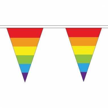 Regenboog vlaggetjes van stof 20 m