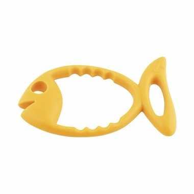 Ringen om op te duiken oranje vis