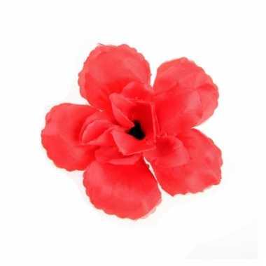 Rode roos klem voor in het haar