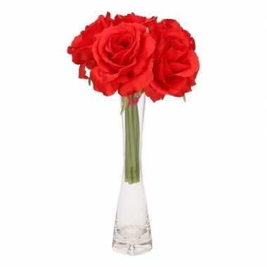 Rode rozen boeket 6 stuks inclusief smal vaasje