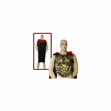 Romeins schild voor volwassenen