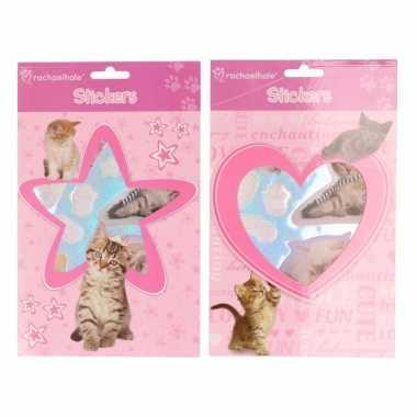 Roze stickerboekje met kittens