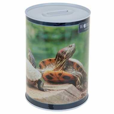 Schildpadden spaarpot 15 cm