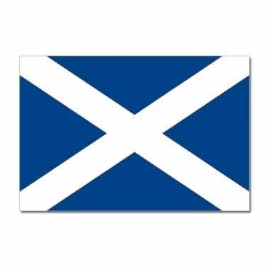 Schotse vlag 90x150 cm