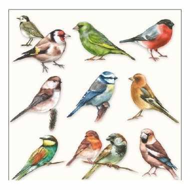 Servetten tuinvogels 3-laags 20 stuks