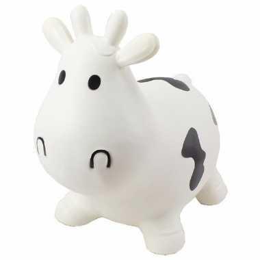 Skippybal koe