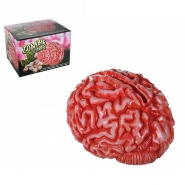 Spaarpot hersenen 18 cm