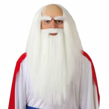 Tovenaarspruik met baard voor heren