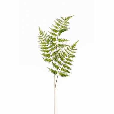 Tree fern kunst tak 85 cm
