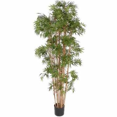 Tropische bamboe boom 150 cm