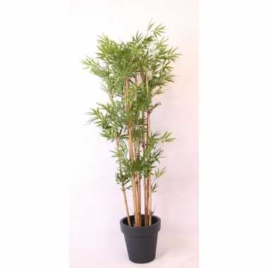 Tropische bamboe boom in antraciete pot 190 cm