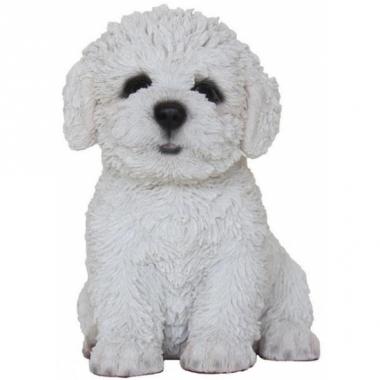 Tuin bichon frise beeldje hond 15 cm