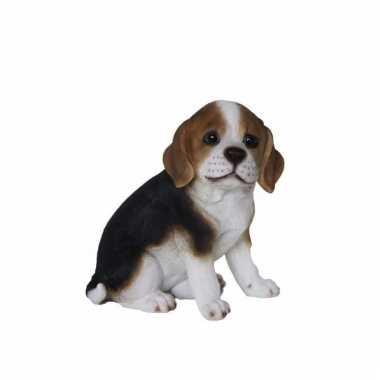 Tuinbeeld beagle hond pup type 1