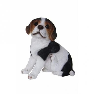 Tuinbeeld beagle hond pup type 2