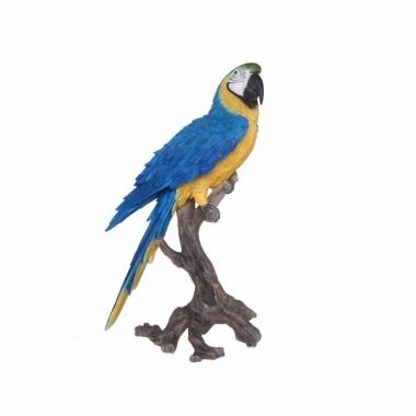 Tuinbeeld blauwe ara papegaai 70 cm