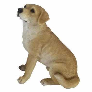 Tuinbeeld blonde labrador hond 22 cm