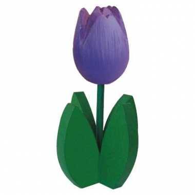 Tulpje met groene bladeren paars