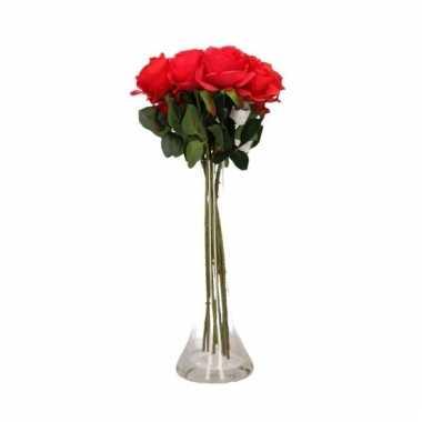 Valentijn 10 rode rozen boeket cadeau in vaas