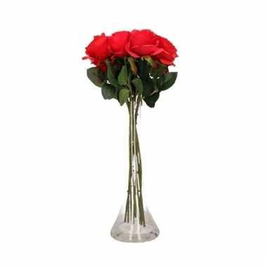 Valentijn 12 rode rozen boeket cadeau in vaas