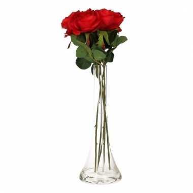 Valentijn 5 rode rozen boeket cadeau in vaas
