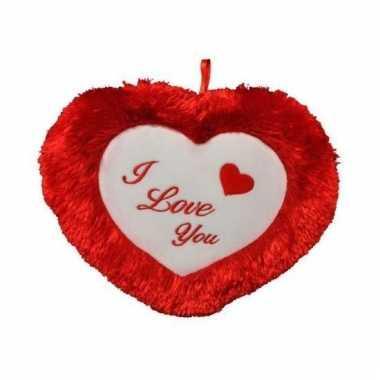 Valentijn kussen kado i love you 45 cm