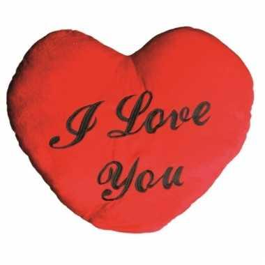 Valentijn kussen kado i love you 60 cm