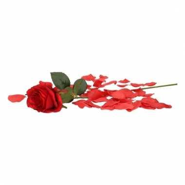 Valentijn rode kunstroos cadeau met rozenblaadjes
