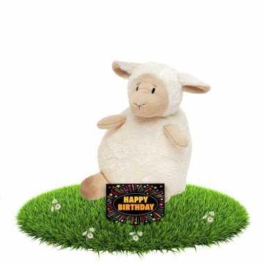 Verjaardagcadeau schapen knuffel beige 16 cm + gratis verjaardagskaar