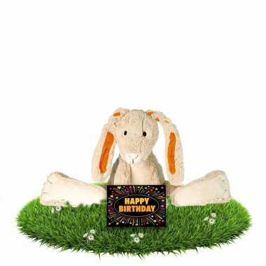 Verjaardagscadeau knuffel konijn/haas twine 22 cm met gratis wenskaar