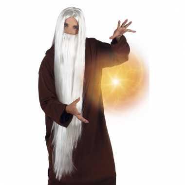 Verkleed witte tovenaars pruiken met baard voor volwassenen
