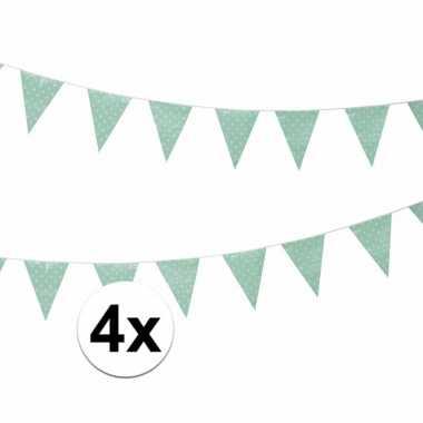 Vier vlaggenlijnen mintgroen met witte stippen 4 meter