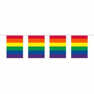 Vierkante regenboog vlaggenlijnen 10 meter