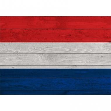 Vintage poster met vlag nederland 84 cm
