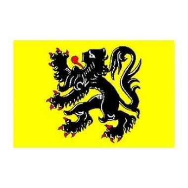 Vlaamse gemeenschap vlag 90 x 150 cm met zwarte leeuw