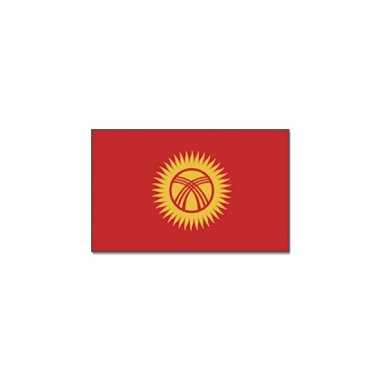Vlag kirgizie